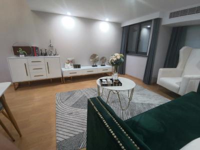 诚意公寓 35平方 2室 商品房 精装 南北通透 普通住宅 复式