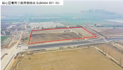 【杭钱塘储出〔2021〕10号】核心区青西二路西侧地块(DJD0404-R21-25)