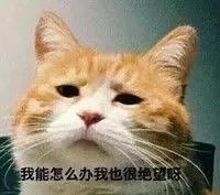 微信图片_20171110085435.jpg