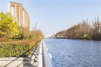 投资超1亿元,临江去年干了这件大事,商贸城、创慧园...