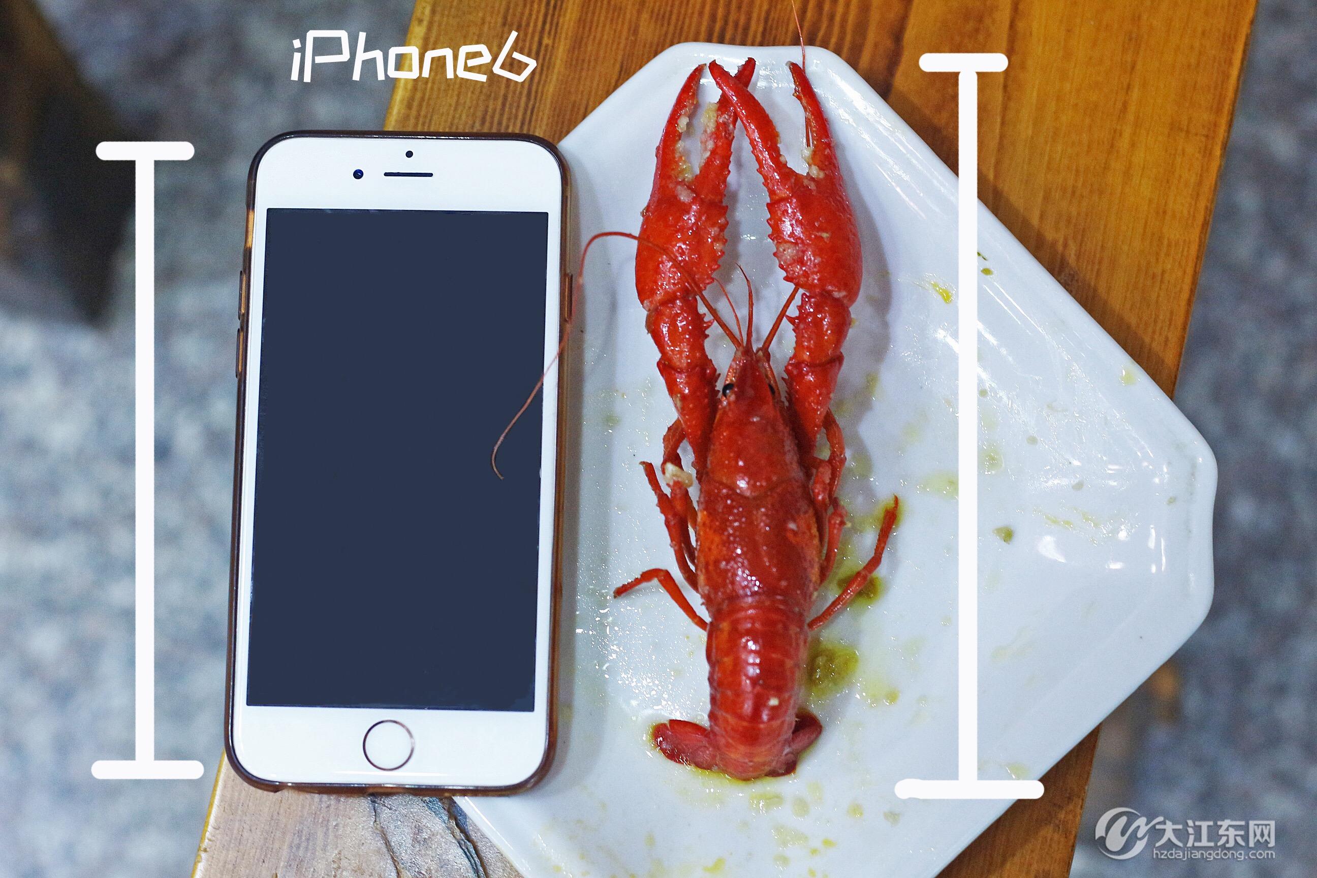 手机大小.jpg