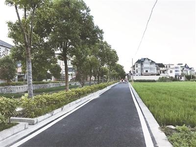 大江东今年要修整提升村级道路11.4公里,完成50个港湾式公交停靠站