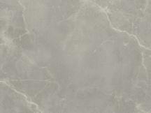 大西洋灰 Atlantic gray